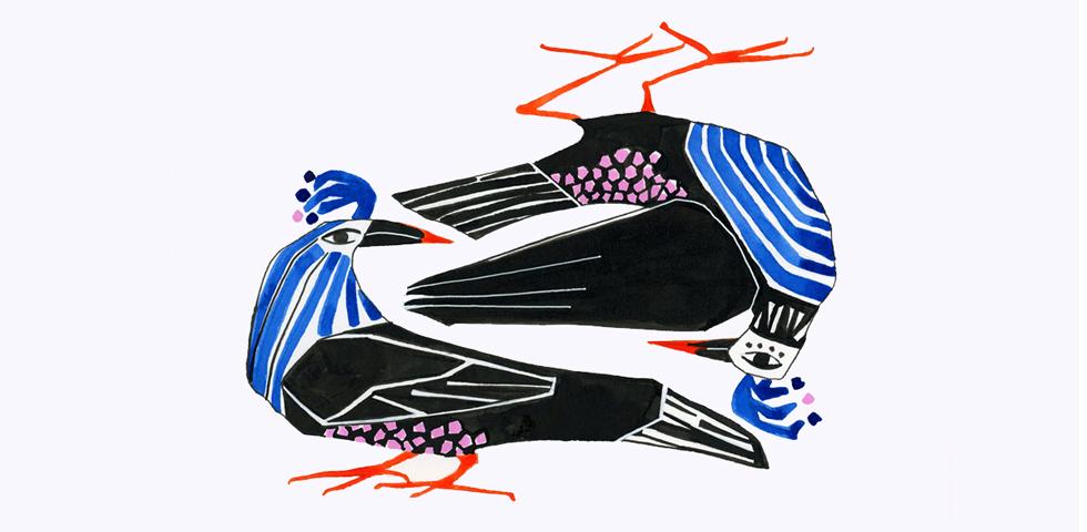 BLOG-Slider-Illustration-birds-flat